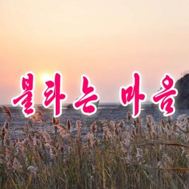 A Warm Heart «불타는 마음» - cover