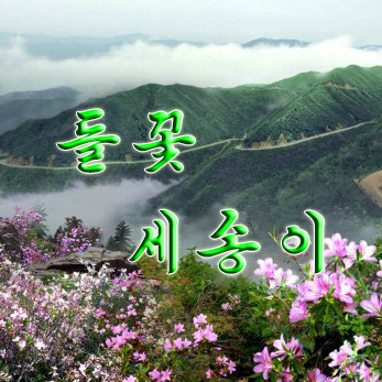 Three Wild Flowers «들꽃 세송이» - cover