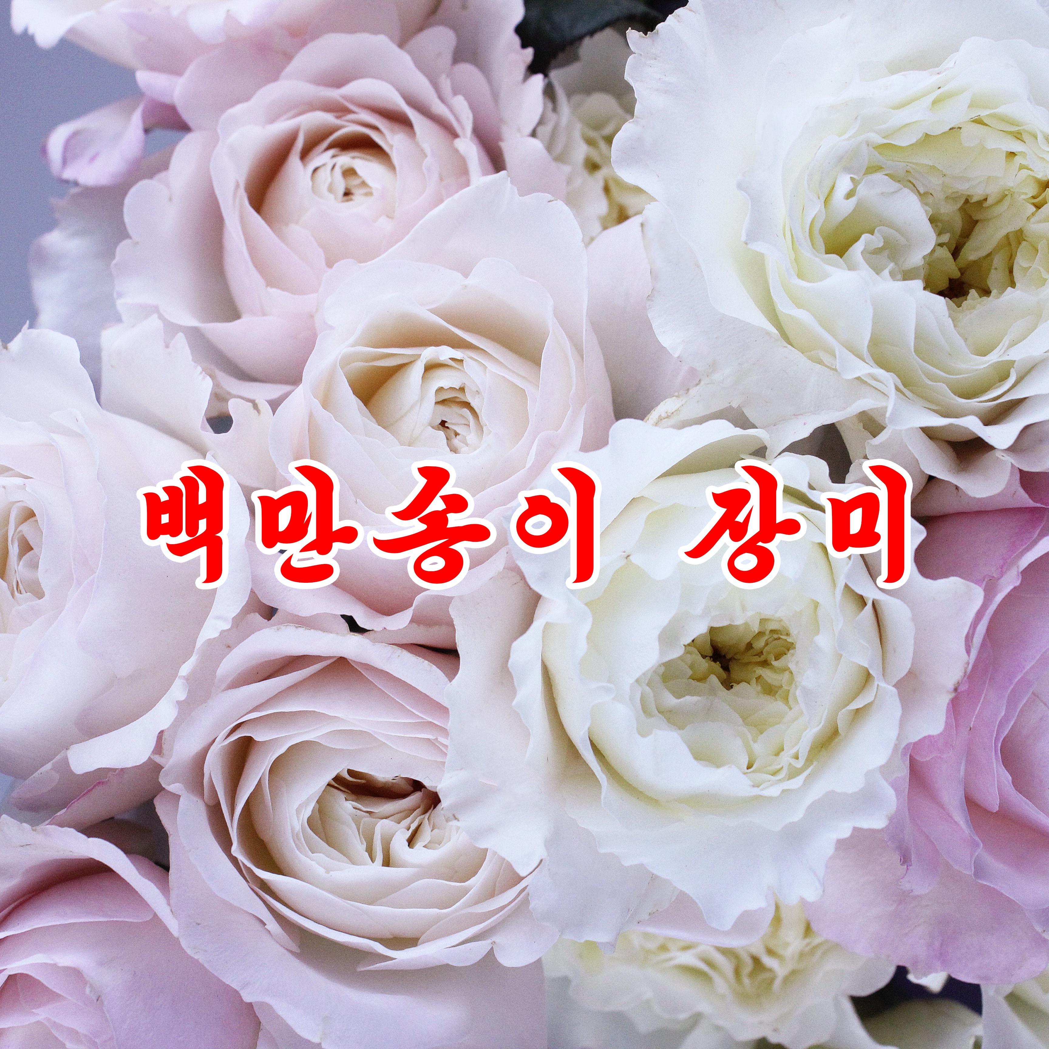 Million Roses «백만송이 장미 / Миллион роз» - cover