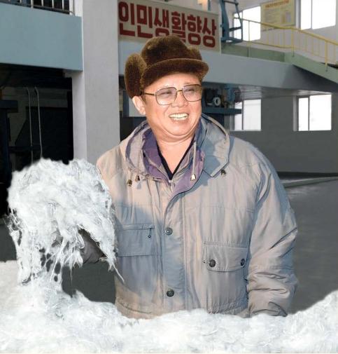 Kim Jong Il sees vinalon cotton, February 2010