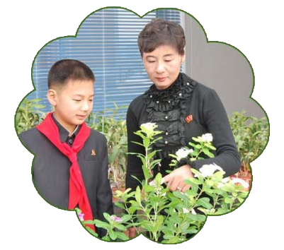 House of Flowers | Explore DPRK