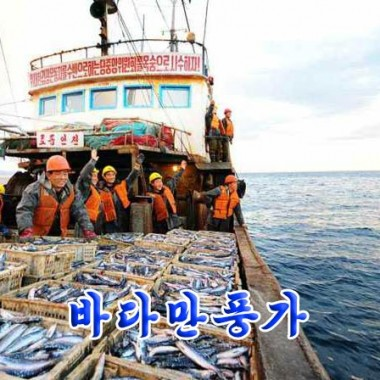 Haul of Fish «바다만풍가» - cover