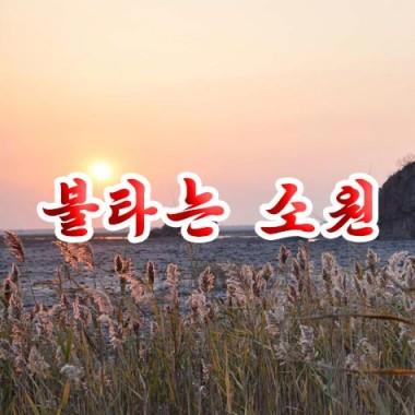 Ardent Desire «불타는 소원» - cover