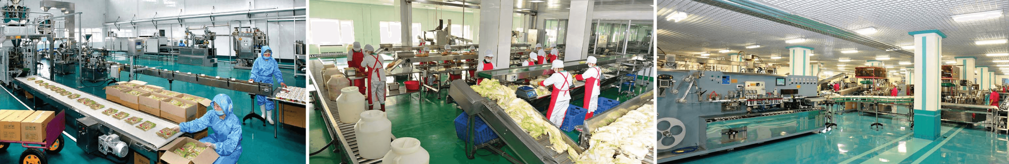 Sci-tech achievements of the institute contribute to modernizing production processes and improving quality of products at the Taedonggang General Fruit Processing Factory, Ryugyong Kimchi Factory and other factories
