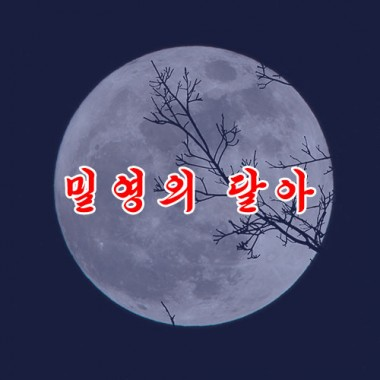 Moon Over the Secret Camp of Mt. Paektu «밀영의 달아» - cover