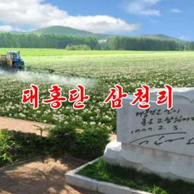 Broad Expense of Tehongdan «대홍단 삼천리» - cover